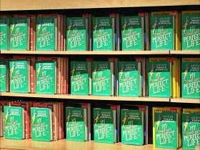 Sizing Up Sophie Kinsella in 10 Minutes